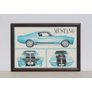Glassfronted Wooden Framed Ford Mustang GT500E Picture